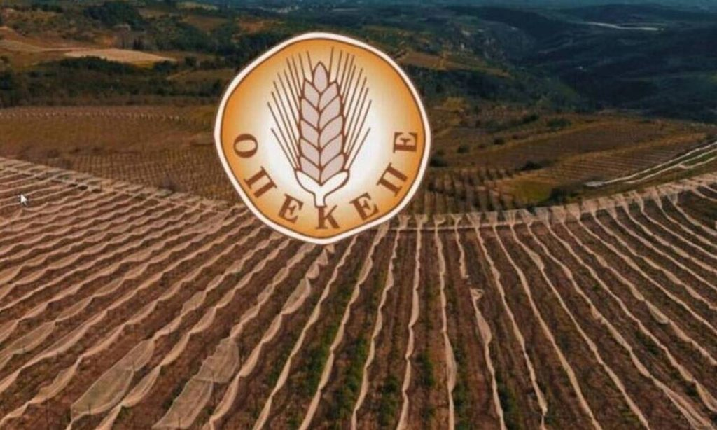 ΟΠΕΚΕΠΕ: Έως 18 Ιουνίου οι αιτήσεις για επιστροφή του 10% σε παραγωγούς