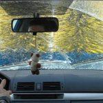 Πήγε να πλύνει το αμάξι αλλά έγινε… ρεζίλι (vid)