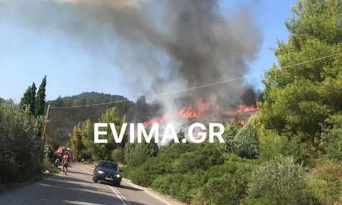 Μεγάλη φωτιά ΤΩΡΑ στην Εύβοια - Κοντά σε σπίτια οι φλόγες