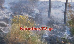 Φωτιά ΤΩΡΑ σε ξερά χόρτα στην Κόρινθο κοντά στις γραμμές του Προαστιακού