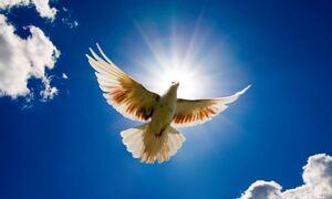 Αγίου Πνεύματος: Μεγάλη γιορτή για την Ορθοδοξία - Τι γιορτάζουμε σήμερα, Δευτέρα 21 Ιουνίου