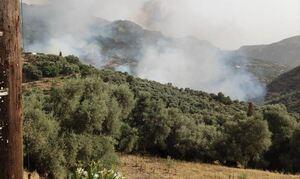 Φωτιά ΤΩΡΑ: Ανεξέλεγκτη η πυρκαγιά στο Κακοδίκι: Εκκενώθηκαν τρεις οικισμοί