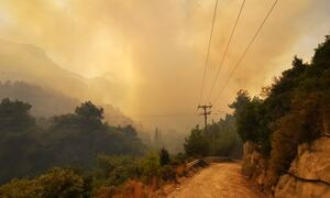 Φωτιά στη Σάμο: Μεγάλη μάχη με τις φλόγες - Προληπτική εκκένωση δύο ξενοδοχείων (pics+vid)