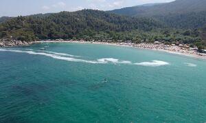 Χαλκιδική: Μετά τις μέδουσες, το φαινόμενο του ευτροφισμού απειλεί τώρα τις παραλίες (pics)