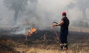 Φωτιά ΤΩΡΑ: Μεγάλη πυρκαγιά στην Κάρυστο
