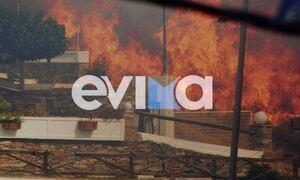Φωτιά ΤΩΡΑ στην Κάρυστο: Οι φλόγες «έγλειψαν» σπίτια - Δραματικές στιγμές