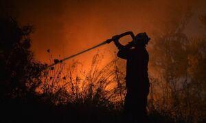 Φωτιά ΤΩΡΑ στην Αττική: Πυρκαγιά σε χαμηλή βλάστηση ανάμεσα σε σπίτια στην Ανθούσα