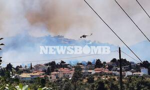 Φωτιά ΤΩΡΑ στη Σταμάτα - Εκκενώνεται ο οικισμός Γαλήνη