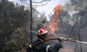 Φωτιά ΤΩΡΑ στο Βύρωνα
