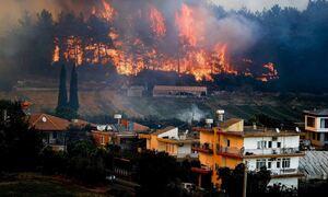 Βλέπουν «φαντάσματα» οι Τούρκοι: «Έλληνες και Κούρδοι έβαλαν τις φωτιές στη χώρα μας»
