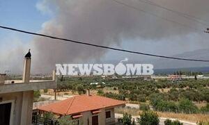 Ρεπορτάζ Newsbomb για φωτιά στην Αχαΐα: «Επικίνδυνη η κατάσταση», εκκενώνονται τέσσερις οικισμοί