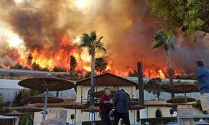 Φωτιά στην Αχαΐα: Εκκενώθηκε και τέταρτος οικισμός - Απομακρύνθηκαν ένοικοι ξενοδοχείου