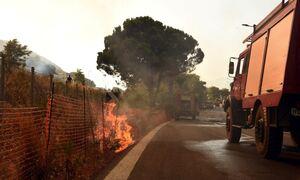 Φωτιά στην Αχαΐα: Σε 16 ανήλθαν οι τραυματίες – Διακομίστηκαν στο νοσοκομείο Αιγίου