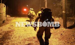 Χωρίς ενεργό μέτωπο η φωτιά στη Νέα Μάκρη – Όλα δείχνουν εμπρησμό