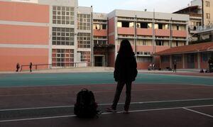 Ρεπορτάζ Newsbomb.gr: Συναγερμός σε σχολεία της Εύβοιας - Βρέθηκαν 15 κρούσματα σε δύο ημέρες